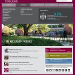 home page with mega menu